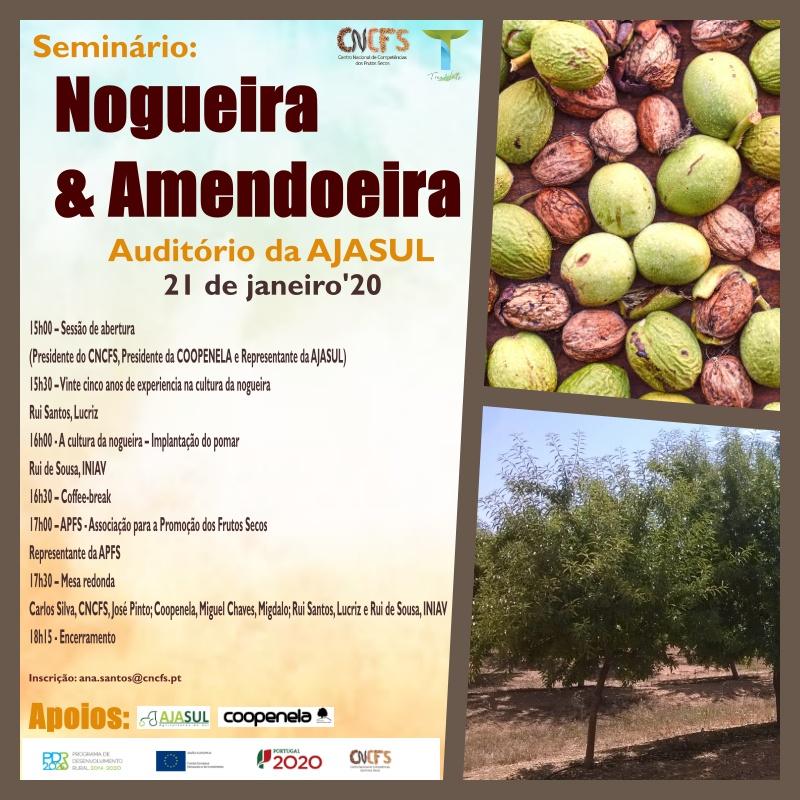 Seminário: Nogueira & Amendoeira
